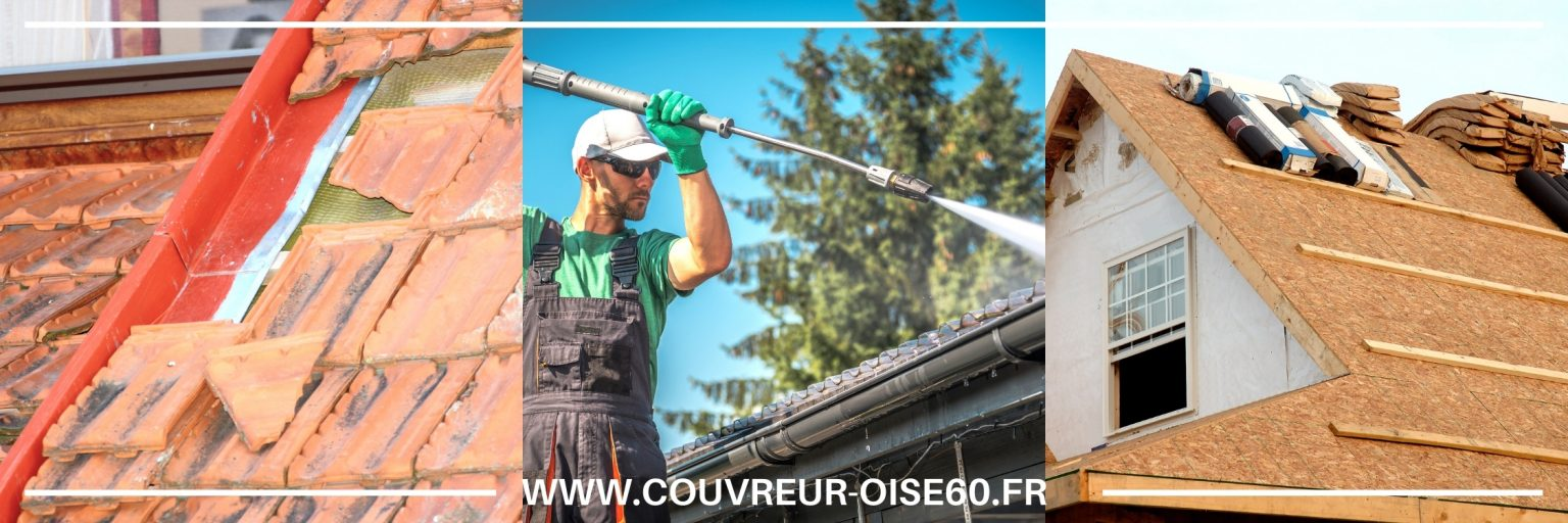 nettoyage et demoussage toiture Creil 60100 Oise